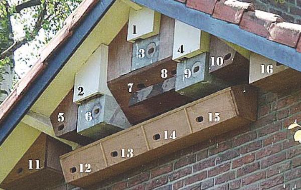 Nestkast Gierzwaluw Verzameling VanderLelie Amersfoort klein